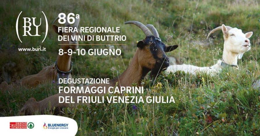 Fiera regionale dei vini di Buttrio 8-9-10 Giugno 2018
